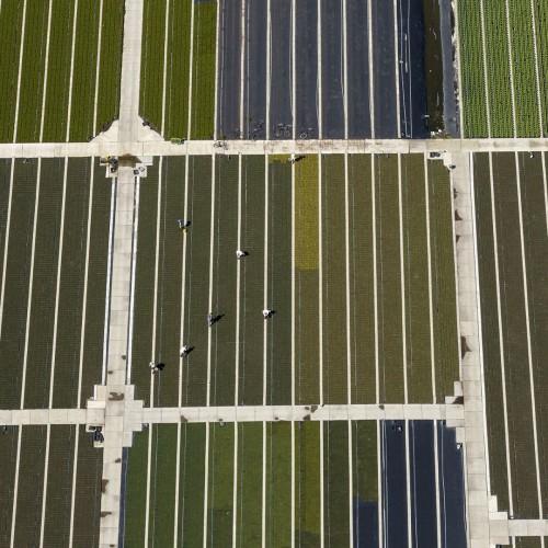 Luchtfoto Utrecht van plantenkwekerij met seizoenswerkers