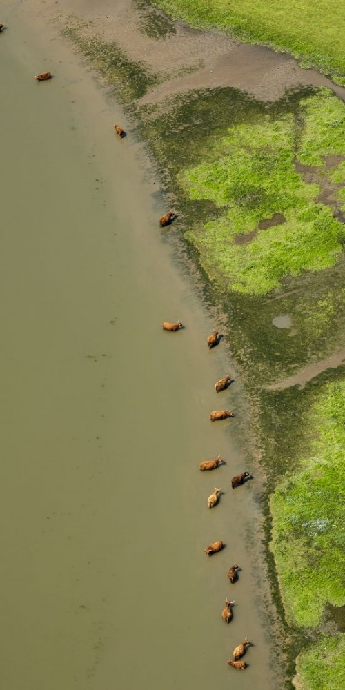 Luchtfoto Zeeland  natuurgebied